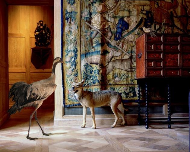 musée de la chasse et de la nature.jpg