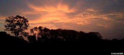 Lever de soleil sur le bois de Polygone - 17 septembre 2017 (c) Arts and Stuffs