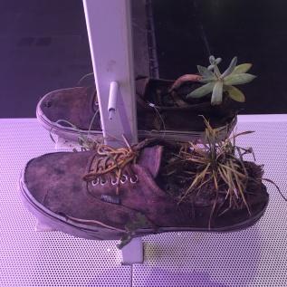 Michel Blazy, collection de chaussures - Venise, Biennale 2017 (C) Arts & Stuffs